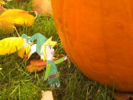 Perfect Pumpkin Zoom In by Iluvtoonlink