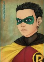 Damian - colors - by Tattletale616