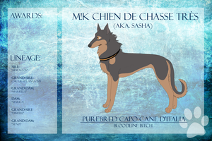 M!K Chien de Chasse Tres Ref Sheet by xMush-Kennelsx