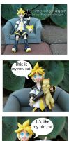 Wise Facts from Len 3 by Yami-Usagi