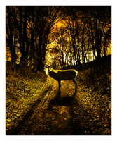 Deer at Dusk by nine9nine9