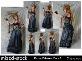 Raven Priestess Pack 3 by mizzd-stock