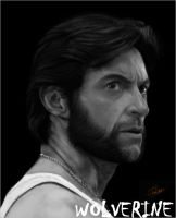 Speed_painting_Wolverine by naycart