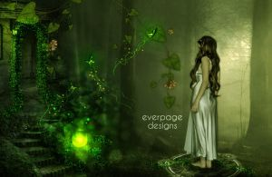 Silent Forest by Everpage