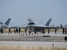 Super Hornets 2 by FantasyStock