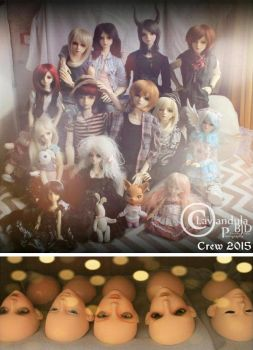 Lavender's Crew - The Chronicles of Life (2015) by Lavandula-BJD