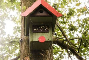 inconspicuous bird house by mpics-inc-gmbh