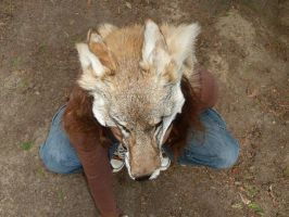 Coyote totem facelift 2 by lupagreenwolf
