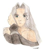 Sephiroth - Lost in the Echo by guineapiggin