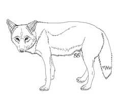 Free Standing Coyote lineart by galianogangster