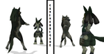 Wolf Link catches Lucario- MMD by Tron-Zelda-Legacy