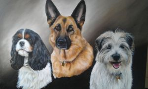Tori, Tia and Dodger by petportraitman