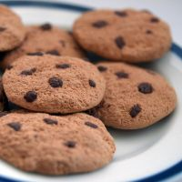 Chocolate Chip Cookie Magnets by AndyGlamasaurus