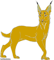 Andy's Caracal by StyxxsOmega