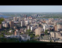 Montreal View 3 by Rixou