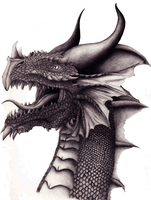 Drawing of a Dragon by Kittymastr
