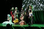 European Cosplay Championship Preliminaries (FIN) by CrisisCosplay