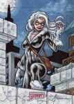 Black Cat - Dangerous Divas 2 by tonyperna