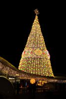 Christmas Tree... by Shooter1970