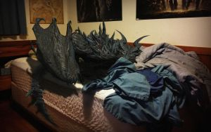 Skyrim: Can't Make My Bed... by trentjones