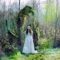 Lost Bride #2 by CaitlinLouisePhotog