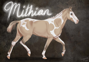 BHS Mithian by Cougar28