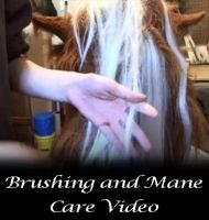 Brush and care video by un-do