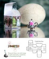 Humming bird egg and box by ForeverCreative