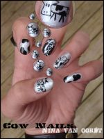 Cow nails by Ninails