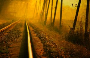 Morning train II by ferrohanc