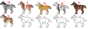 Canine adopts by KirinKade