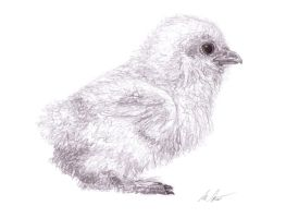Baby Chicken by ahillamon