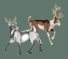 Reindeer Adults by ThalionKoi