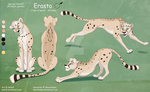 Erasto - Complex Ref Sheet Commission by Nala15