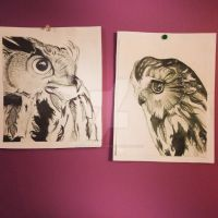 Owls by SarahxMotionless
