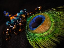 Jula Peacock feather by WaterAlone