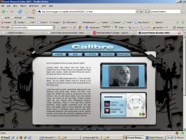 Calibre Website by akiwi
