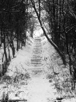 Stairs in the Park by ArthurGautama