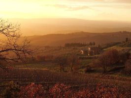 Evening in Tuscany - Jan 2013 by eswendel