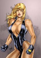 DC's Black Canary by Clu-art