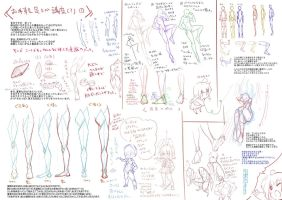 Anatomy Legs and Feets by Bardi3l