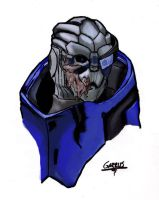 Garrus Vakarian from Mass Effect 2 by Akiba91