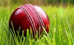Cricket ball by Hedgehog-the-Hermit