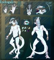 Indogali ref commish anthro by Anarchpeace