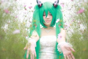 Hatsune Miku_August bride by Dan-Gyokuei