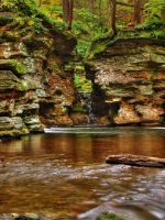 Ricketts Glen State Park 108 by Dracoart-Stock