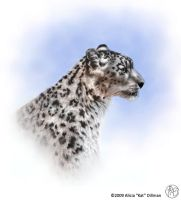 Snow Leopard Painting by KatGirlStudio