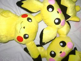 Pokemon- Chu's Family