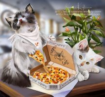 Pizza Cat by Kajenna