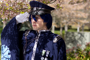 A Salute to Cherry Trees by TimmCosplay